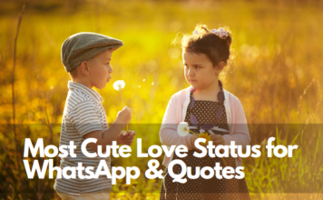 most cute love status for whatsapp love quotes